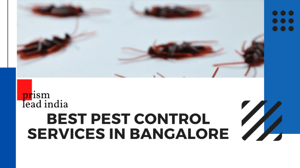 Pest Control Service Electronic City
