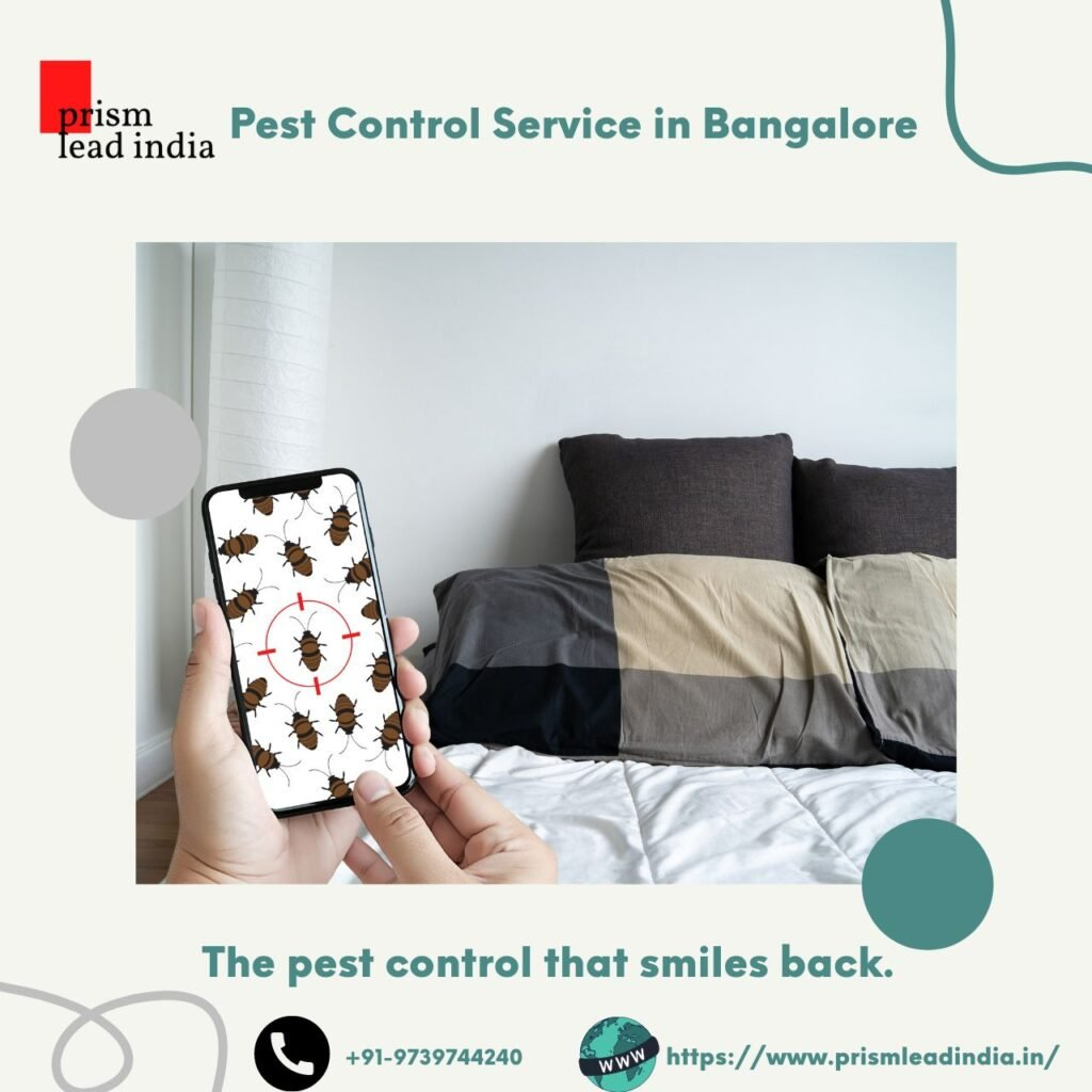 Pest Control Service in Cooke Town