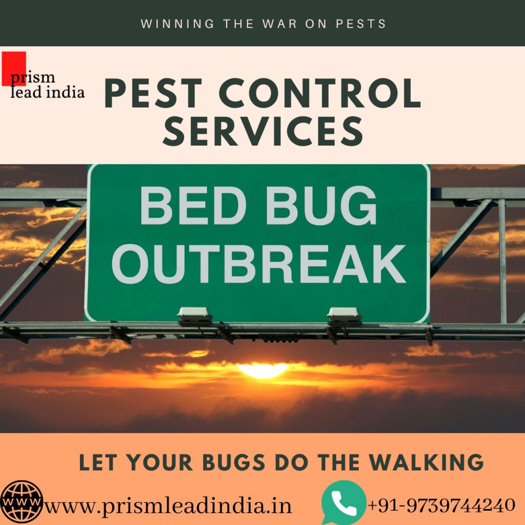 Pest Control Services in BTM Layout