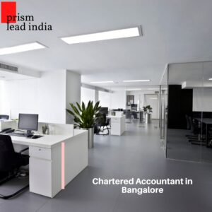 Chartered Accountant in Frazer Town